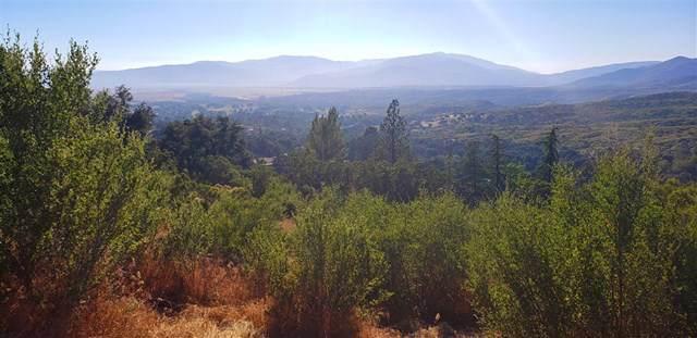 13711209 Camino Ortega, Warner Springs, CA 92086 (#190041794) :: Faye Bashar & Associates
