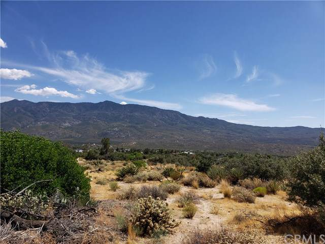 0 Alpine Drive, Mountain Center, CA 92561 (#SW19180366) :: Sperry Residential Group