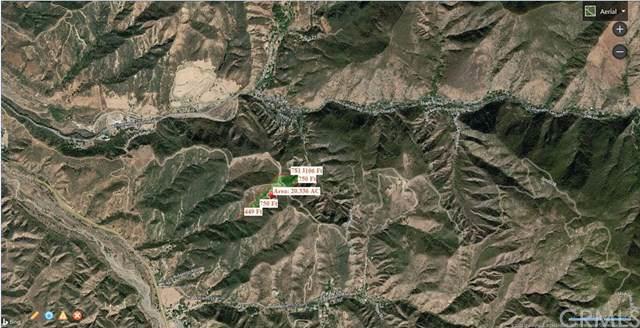 20 Williams Canyon Rd, Silverado Canyon, CA 92676 (#NP19181302) :: J1 Realty Group