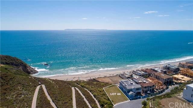 1 Beach View Avenue, Dana Point, CA 92629 (#NP19177677) :: Sperry Residential Group