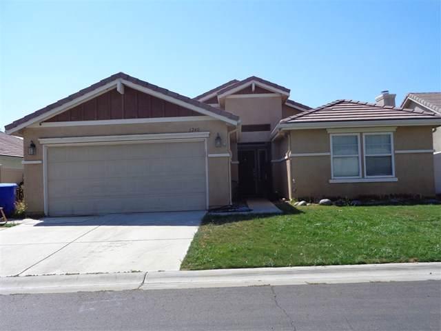 1240 Buckwheat Trail, Campo, CA 91906 (#190042293) :: Veléz & Associates