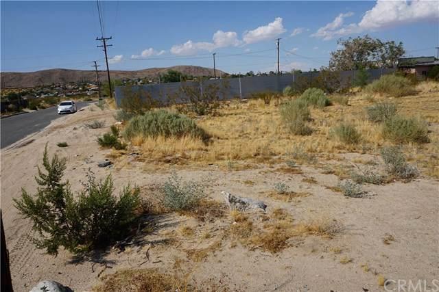6411 Elwood Street, Joshua Tree, CA 92252 (#JT19171424) :: Berkshire Hathaway Home Services California Properties