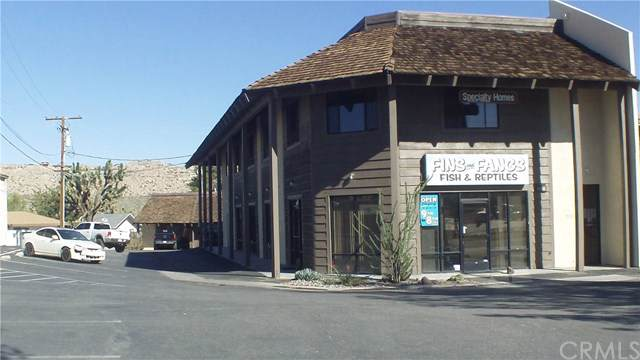 57466 Twentynine Palms, Yucca Valley, CA 92284 (#JT19126254) :: RE/MAX Empire Properties