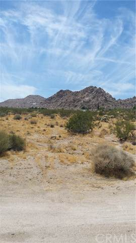 64342 Hollinger Road, Joshua Tree, CA 92252 (#JT19182819) :: RE/MAX Masters