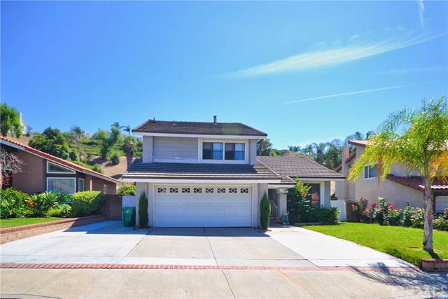 1617 Fire Hollow Drive, Diamond Bar, CA 91765 (#TR19184149) :: Fred Sed Group