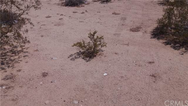 1 Morongo, 29 Palms, CA  (#JT19182889) :: Team Tami