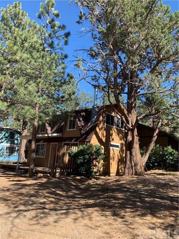 379 Santa Barbara, Sugarloaf, CA 92315 (#OC19185045) :: Faye Bashar & Associates