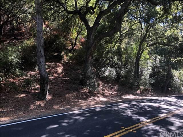 30792 Silverado Canyon Road, Silverado Canyon, CA 92676 (#OC19185267) :: Legacy 15 Real Estate Brokers