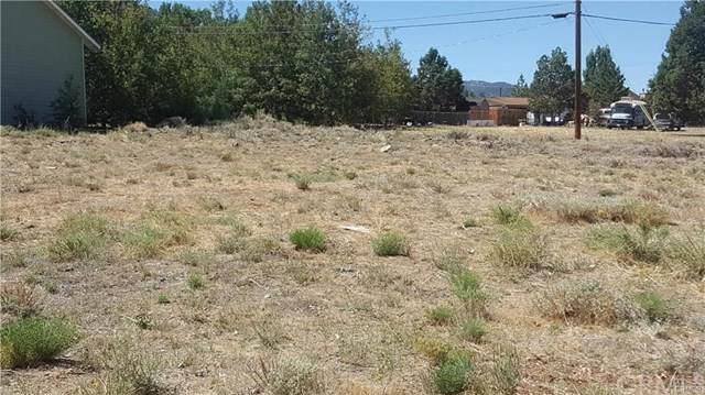 1125 Valley View, Big Bear, CA  (#EV19186286) :: J1 Realty Group