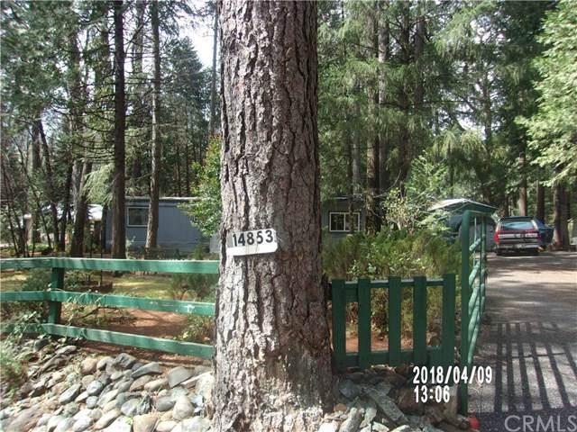 14853 Magnolia Drive - Photo 1