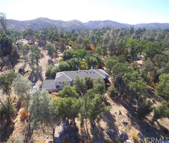 4341 Bridgeport Drive, Mariposa, CA 95338 (#MP19187547) :: Allison James Estates and Homes