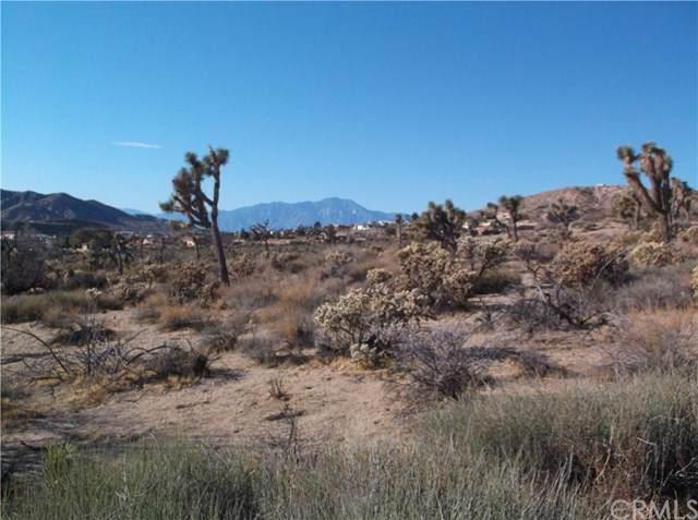54364 Pinon Drive, Yucca Valley, CA 92284 (#JT19187655) :: Z Team OC Real Estate
