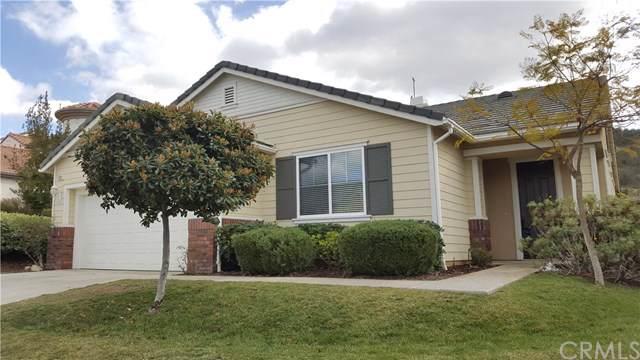 27693 Elderberry Street, Murrieta, CA 92562 (#SW19187751) :: EXIT Alliance Realty