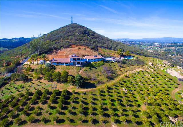 29555 Sierra Rojo Lane, Valley Center, CA 92082 (#SW19187815) :: Keller Williams Realty, LA Harbor