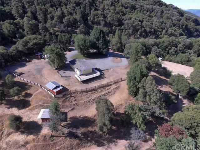8500 Highway 175, Hopland, CA 95449 (#LC19188009) :: Allison James Estates and Homes