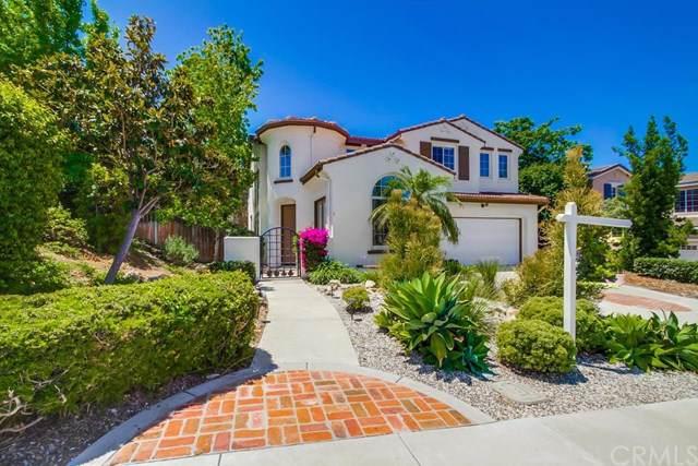 1060 Tesoro Avenue, San Marcos, CA 92069 (#SW19189178) :: The Miller Group
