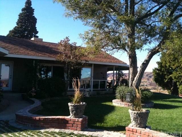 40005 92nd Street W, Leona Valley, CA 93551 (#SR19189258) :: Faye Bashar & Associates