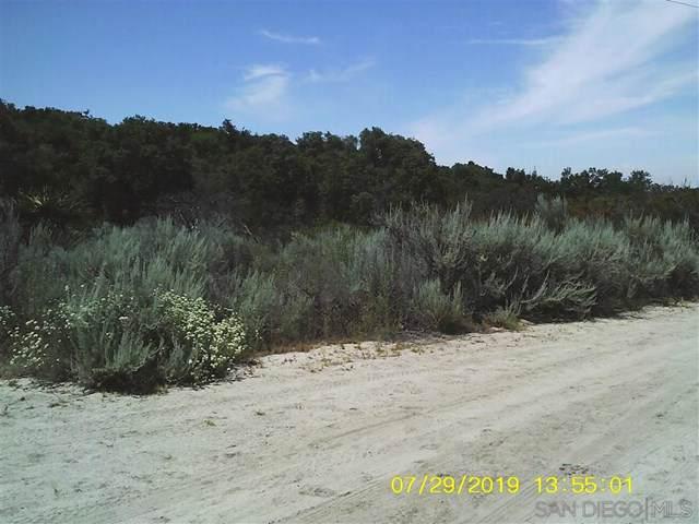 38897 Pinon Pine Trail - Photo 1