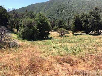 0 San Francisquito Canyon Road - Photo 1