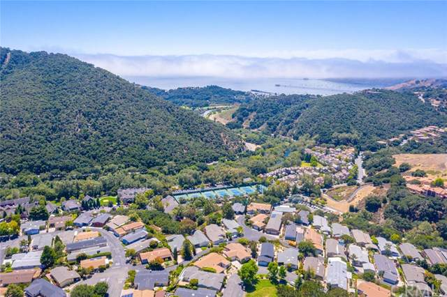 252 Country Club Drive, Avila Beach, CA 93424 (#PI19188951) :: RE/MAX Parkside Real Estate