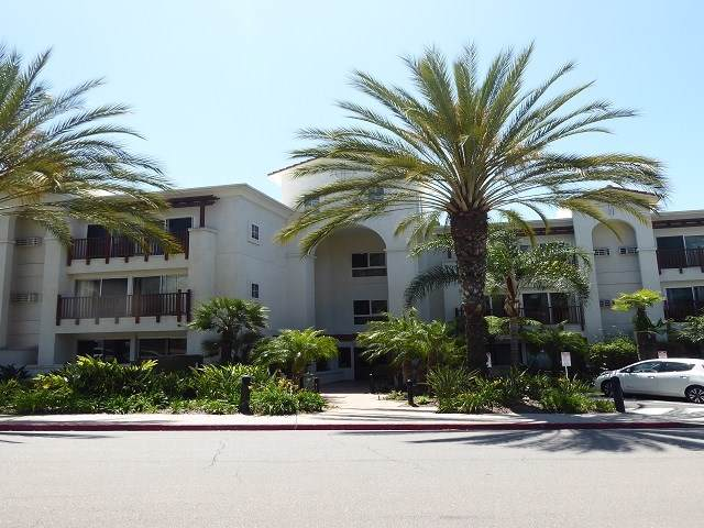 2003 Costa Del Mar Rd #680, Carlsbad, CA 92009 (#190044245) :: Heller The Home Seller
