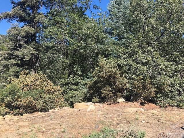 0 Cedar, Angelus Oaks, CA 92305 (#EV19190523) :: Allison James Estates and Homes