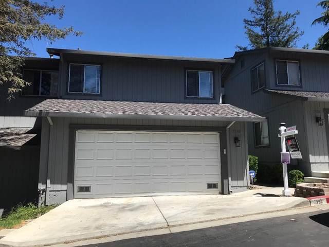 7390 Tulare Hill Drive, San Jose, CA 95139 (#ML81763977) :: Legacy 15 Real Estate Brokers