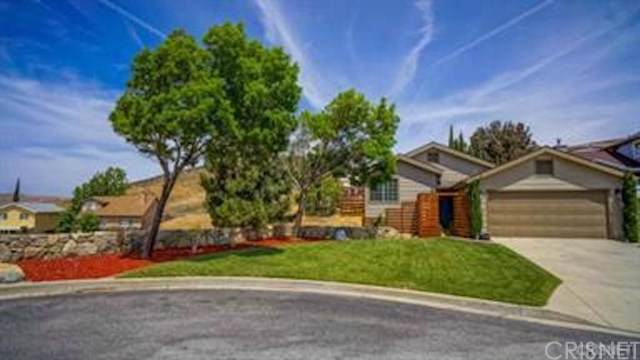 13225 Lonetree Drive, Lake Elizabeth, CA 93532 (#SR19182764) :: Rogers Realty Group/Berkshire Hathaway HomeServices California Properties