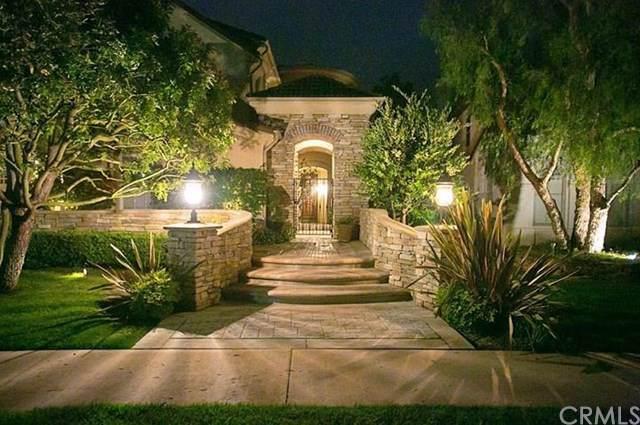 7 Coastal Canyon Drive, Newport Coast, CA 92657 (#OC19190009) :: Allison James Estates and Homes