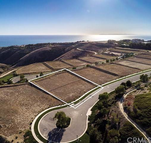 18 Coastline Drive, Newport Coast, CA 92657 (#OC19191329) :: Brandon Hobbs Group