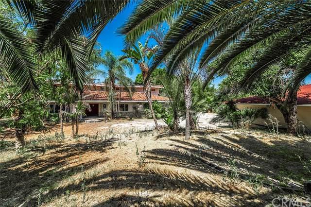 1333 Dorothea Road, La Habra Heights, CA 90631 (#DW19191678) :: The Laffins Real Estate Team