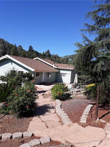 10152 Point Lakeview Road, Kelseyville, CA 95451 (#LC19192283) :: RE/MAX Masters