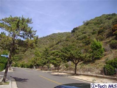 0 Pine Glen Road, La Crescenta, CA 91214 (#319003138) :: The Brad Korb Real Estate Group