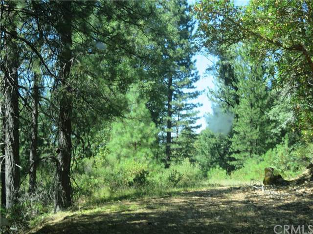 0 000 Barns Ranch Road, Covelo, CA  (#SN19192095) :: Team Forss Realty Group