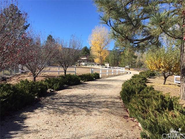60189 Devils Ladder Road, Mountain Center, CA 92561 (#219021761DA) :: eXp Realty of California Inc.