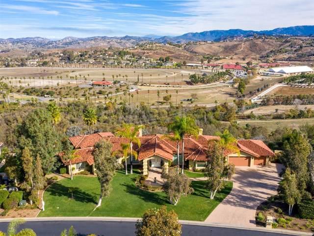 31432 Lake Vista Cir, Bonsall, CA 92003 (#190045158) :: Faye Bashar & Associates