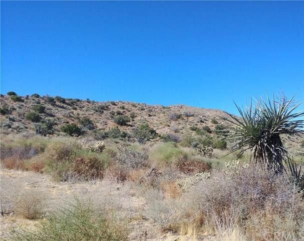 0 Cedar, Morongo Valley, CA 92256 (#JT19193655) :: Sperry Residential Group