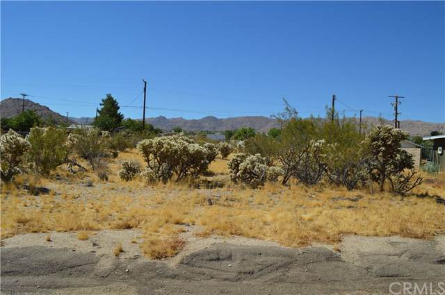 61969 Verbena Road, Joshua Tree, CA 92252 (#JT19194458) :: Allison James Estates and Homes