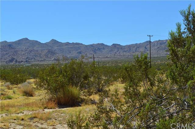 0 Chollita Road, Joshua Tree, CA 92252 (#JT19195476) :: Allison James Estates and Homes