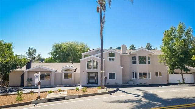4104 Conrad Dr, Spring Valley, CA 91977 (#190045436) :: Steele Canyon Realty