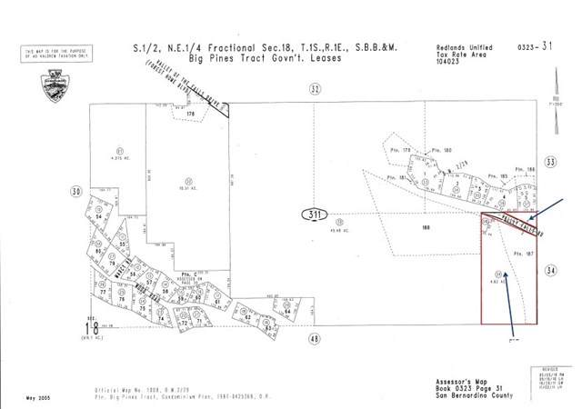 40881 Valley Of The Falls Drive, Forest Falls, CA 92339 (#IV19195486) :: Allison James Estates and Homes