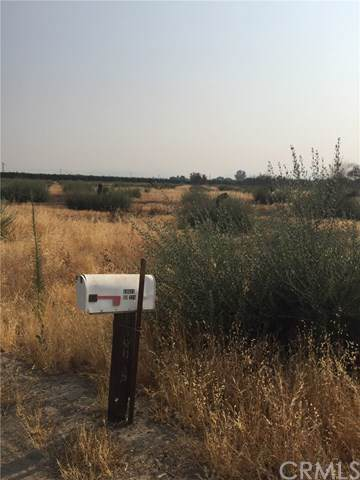 224 Road, Tulare, CA 93267 (#DW19195560) :: The Marelly Group | Compass