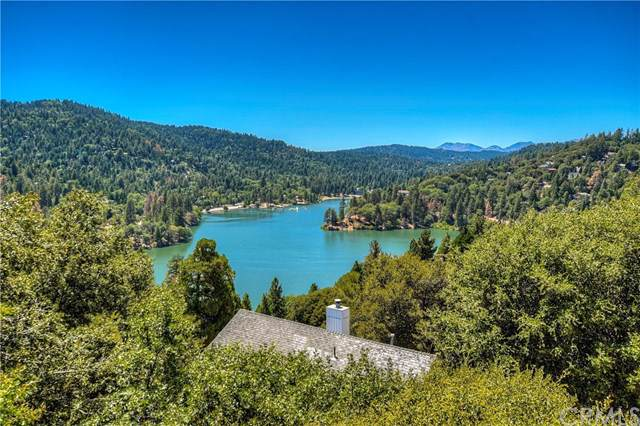 418 Darfo Drive, Crestline, CA 92325 (#EV19195804) :: Allison James Estates and Homes