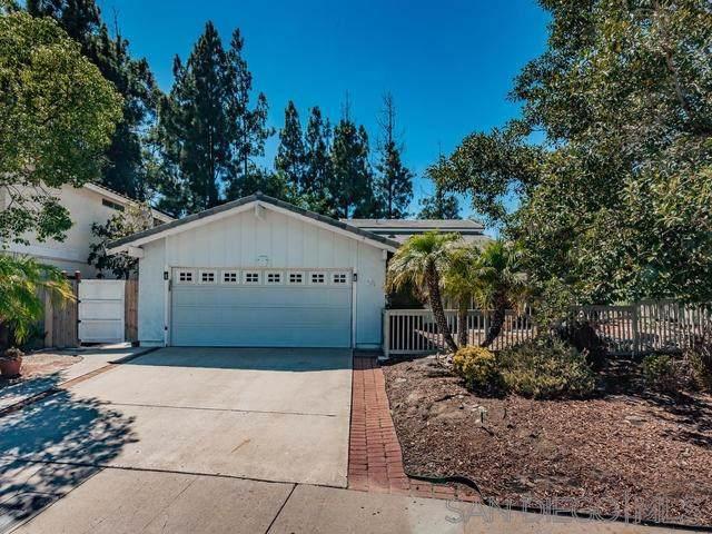 11094 Carlota Street, San Diego, CA 92129 (#190045520) :: Z Team OC Real Estate