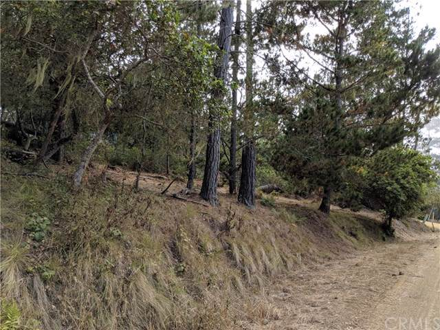 0 Amherst Place, Cambria, CA 93428 (#SC19195053) :: Doherty Real Estate Group