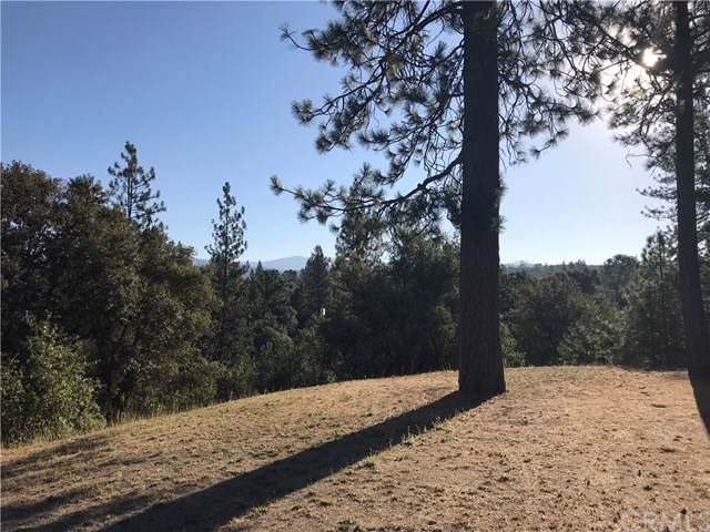 0-3.61 AC Meadowwood Road, Oakhurst, CA 93644 (#FR19195567) :: Rogers Realty Group/Berkshire Hathaway HomeServices California Properties