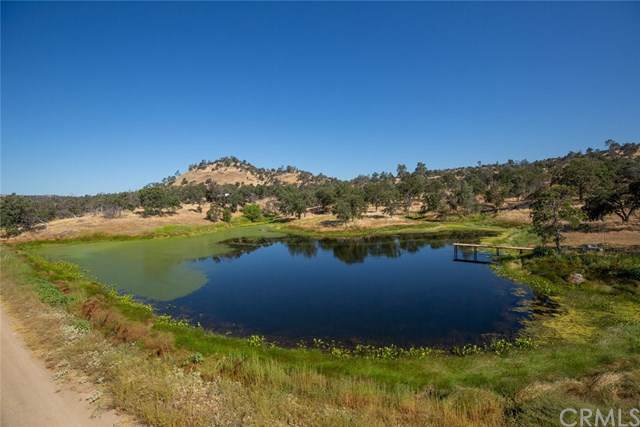 3189 Oak Grove Road, Mariposa, CA 95338 (#MP19194429) :: The Marelly Group | Compass