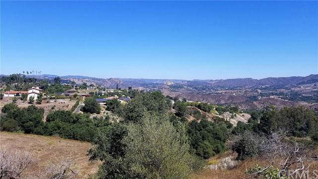 1052 N Stage Coach Lane, Fallbrook, CA 92028 (#TR19196261) :: Rogers Realty Group/Berkshire Hathaway HomeServices California Properties