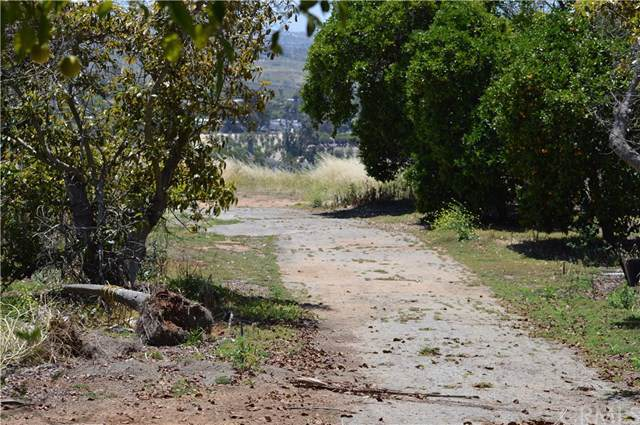 0 Mission Road, Bonsall, CA 92003 (#TR19196508) :: J1 Realty Group