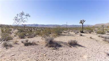 4777 Bonita Avenue, Yucca Valley, CA 92284 (#JT19193462) :: RE/MAX Empire Properties